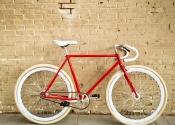 Single-speed-rood